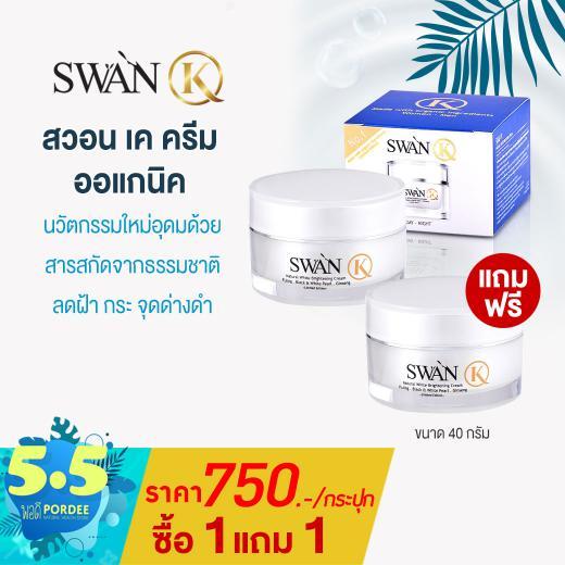 swan40